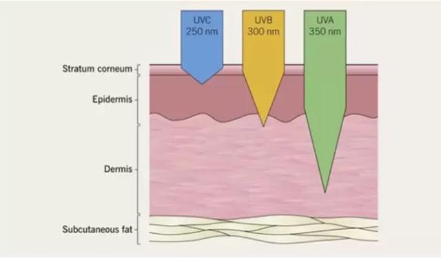 UVGI-based Room Disinfection device developed by IIT-Ropar for CORONA VIRUS
